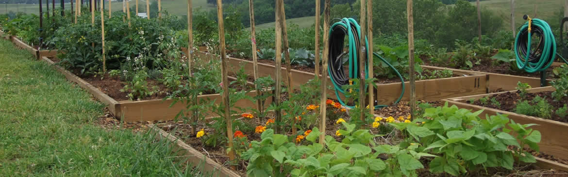 Research Regarding the Benefits of Community Gardens