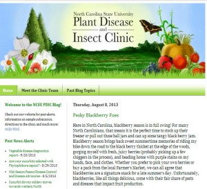 Cover photo for NCSU Plant Disease and Insect Clinic