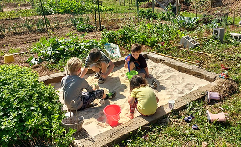 10 Steps to Starting a Community Garden   NC State Extension