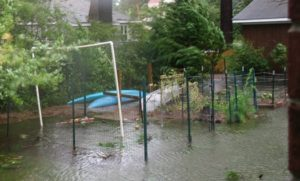 Cover photo for Webinar: Impact of Flood Water on Vegetable Garden Produce and Soil