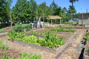 Fairview Community Garden